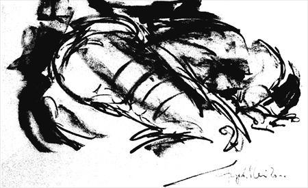 angela-rei-disegni-046