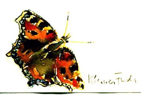 angela-rei-serie-farfalle-006