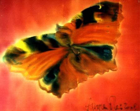 angela-rei-serie-farfalle-010