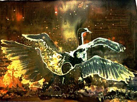 angela-rei-seta-012